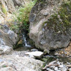 Peterson Creek Park 15