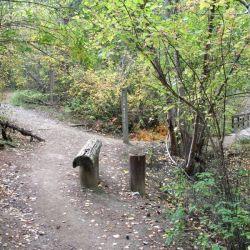Peterson Creek Park 16