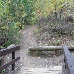 Peterson Creek Park 17