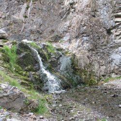 Peterson Creek Park 22
