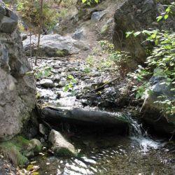 Peterson Creek Park 24