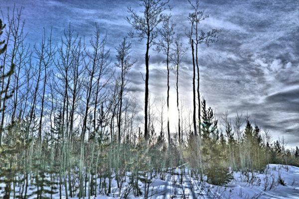 Snowshoeing on Hull Hill – Kamloops Trails