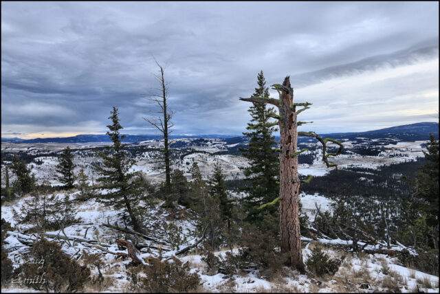Exploring Sugarloaf Hill – Kamloops Trails