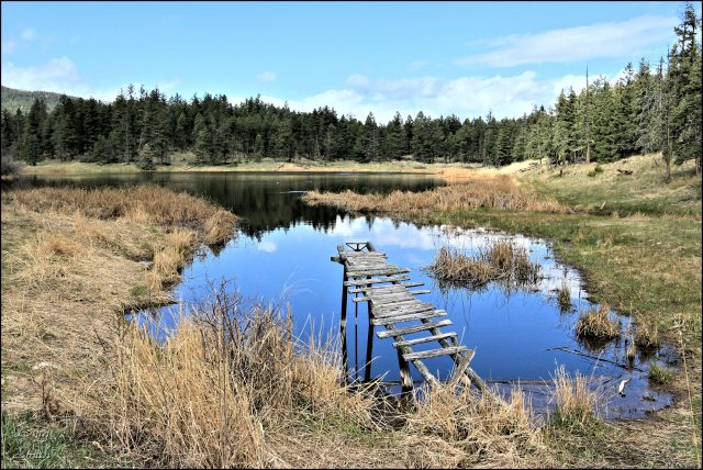 Dam Lake, Thickets Meadows, and Spade Lake