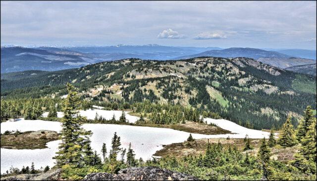 On Mt. Thynne – Kamloops Trails