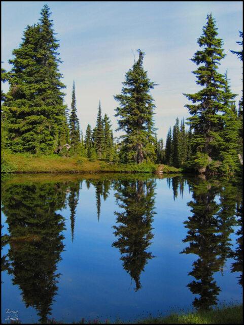 Panorama Ridge – Kamloops Trails