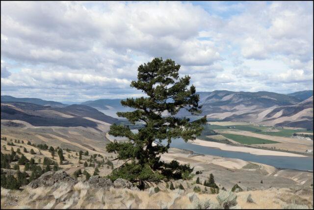 West Kenna Wanderings - Kamloops Trails