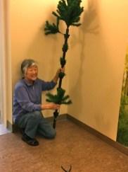Freda 's tree needs help!