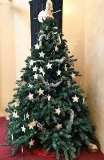 """Our """"Giving Tree"""". This year's recipients are """"Safe House Safer Society (international), """"Cultural Revitalization"""" for indigenous youth (national) and our KUC Preschool (local)."""