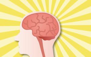 脳のエネルギー