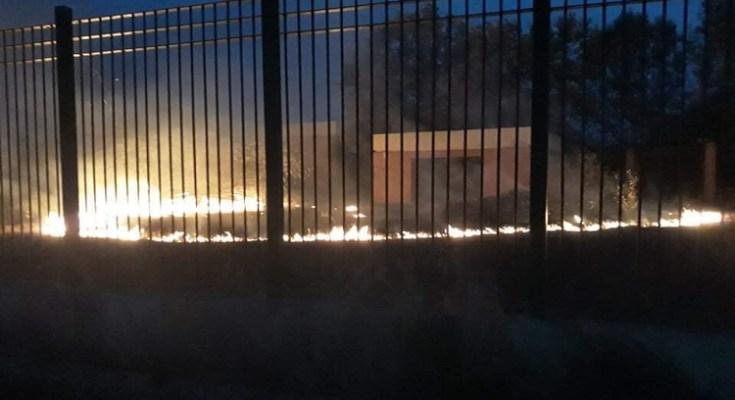 Φωτιά σε πάρκο στην Ν.Μαγνησία