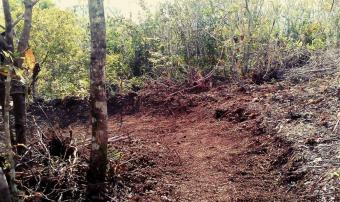 Kamp Aninipot Mountain Bike/Walk Trail