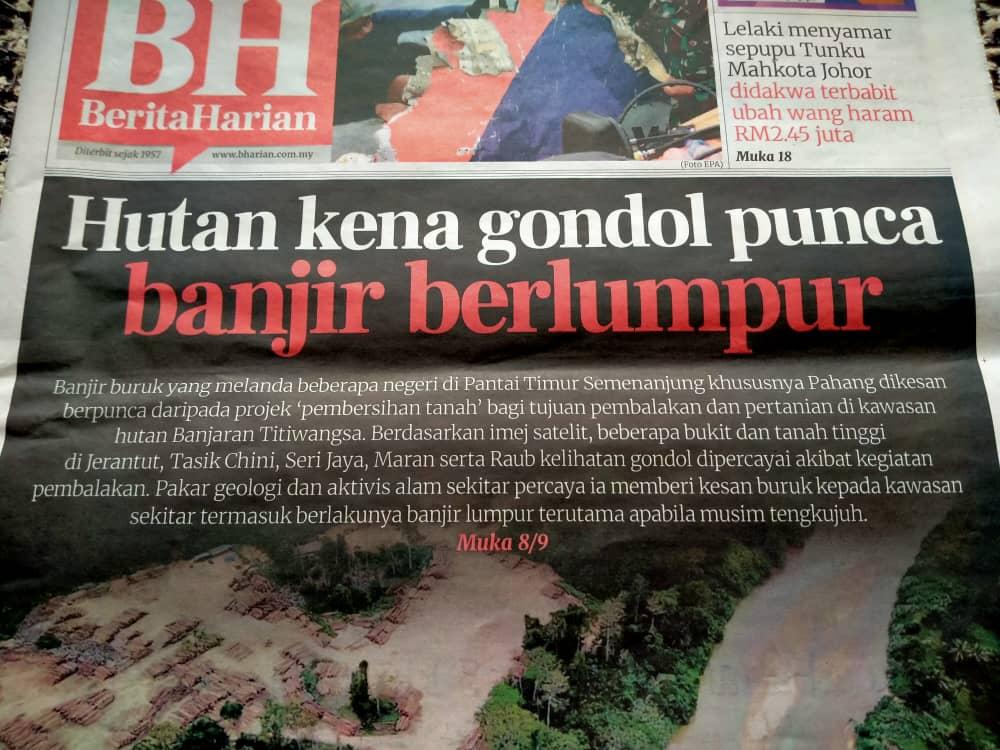 Saintis pertegas hutan gondol punca bah besar, kerajaan Pahang nafi salahkan hujan lebat