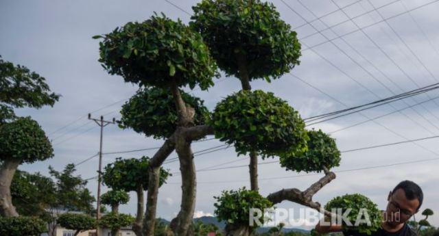 Pemkot Cimahi dan Komunitas Peduli Lingkungan Tanam Pohon