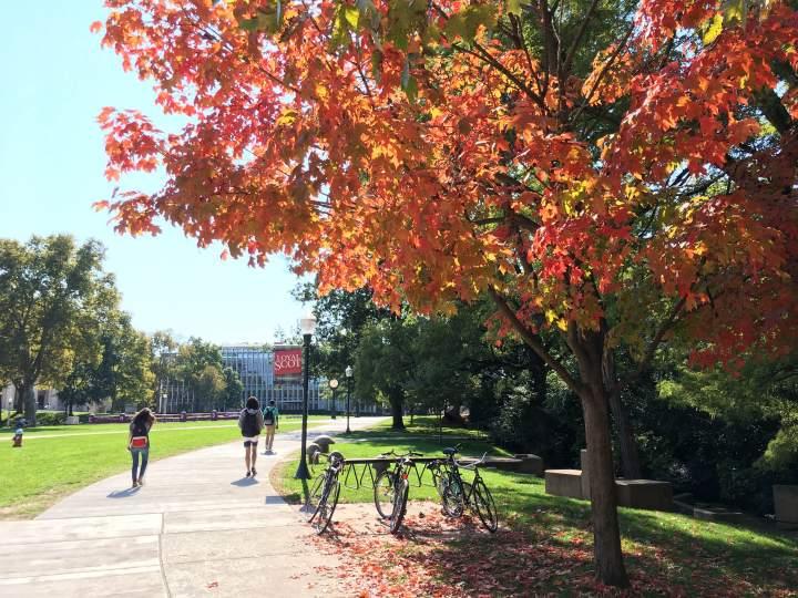 Lingkungan di sekitar Carnegie Mellon University.