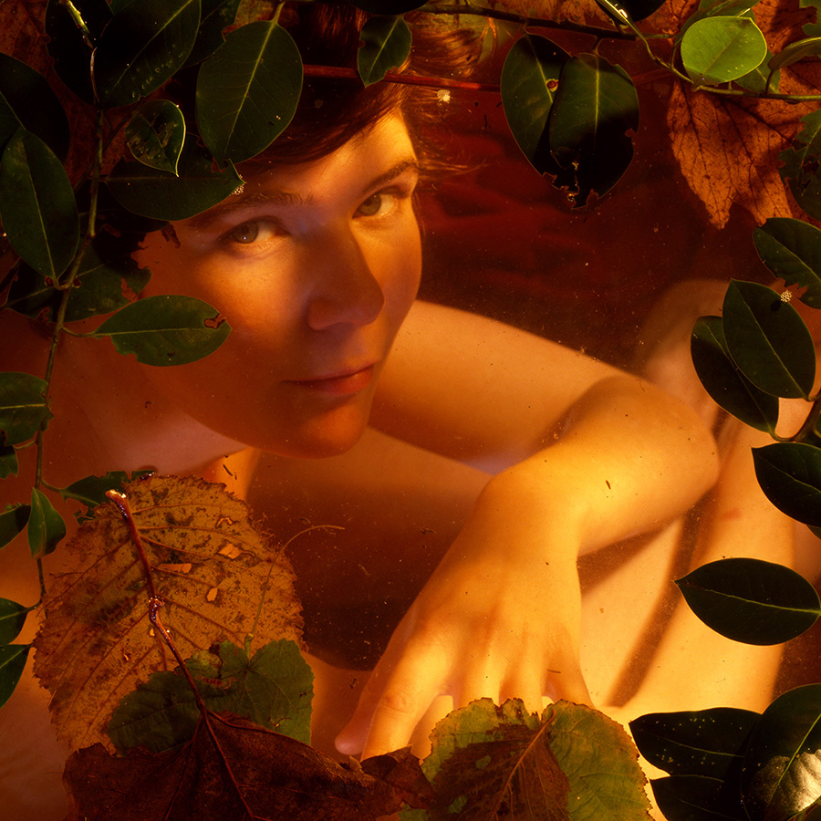 White woman, early 20s, under water with leaves on top. Shot from above.