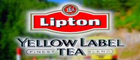 Lipton Basant Festival