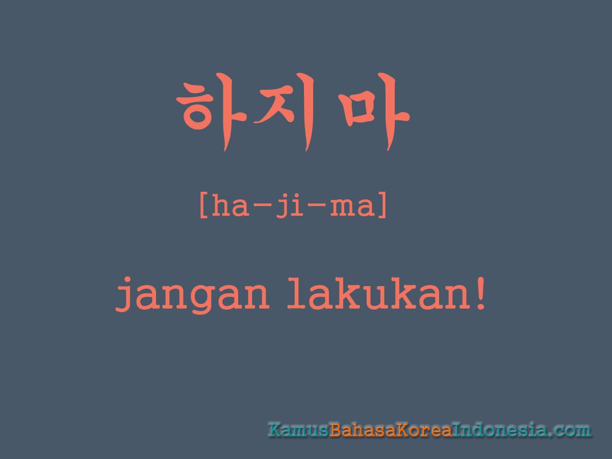 Kamus Bahasa Korea  Kamus Bahasa Korea Indonesia Seharihari