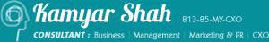 consultant-logo-kamyar-shah