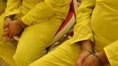 Photo of القبض على متهمين اثنين بحوزتهم مواد مخدرة  من خلال مفارز مكافحة المخدرات بكربلاء