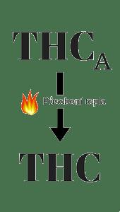 thca-premena-thc-transparent
