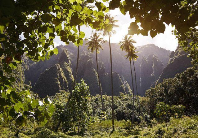 Iles-Marquises-decouvrez-les-dix-plus-beaux-endroits-de-l-archipel
