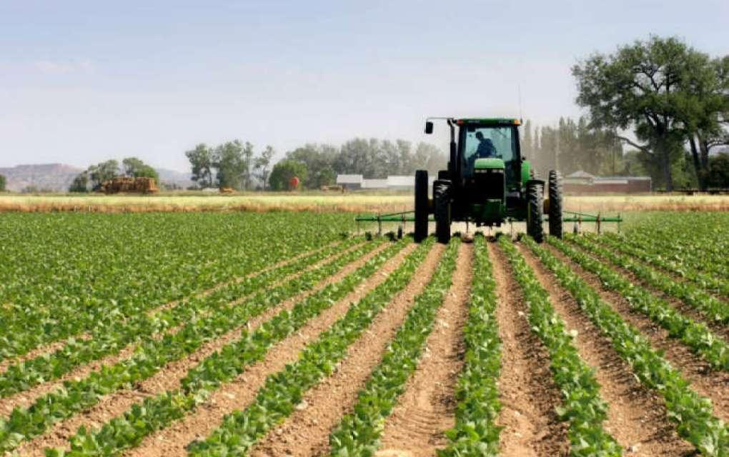 Земјоделците бараат поголема контрола на откупувачите и трговците