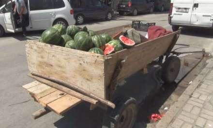 Струмичани реагираат на запрежните коли во центарот на градот од каде се продава зеленчук