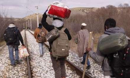 11 мигранти се ободеле илегално да влезат во земјава