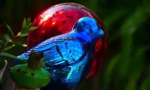 Farbtupfer im Garten