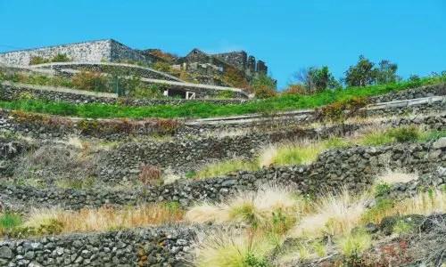 Trockenmauer aus alterZeit