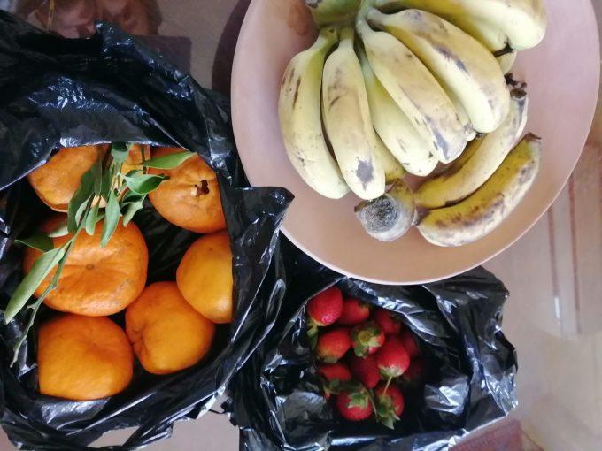 ルクソールの果物