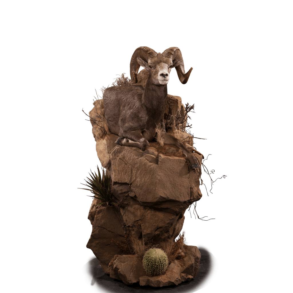 Desert sheep stone pedestal