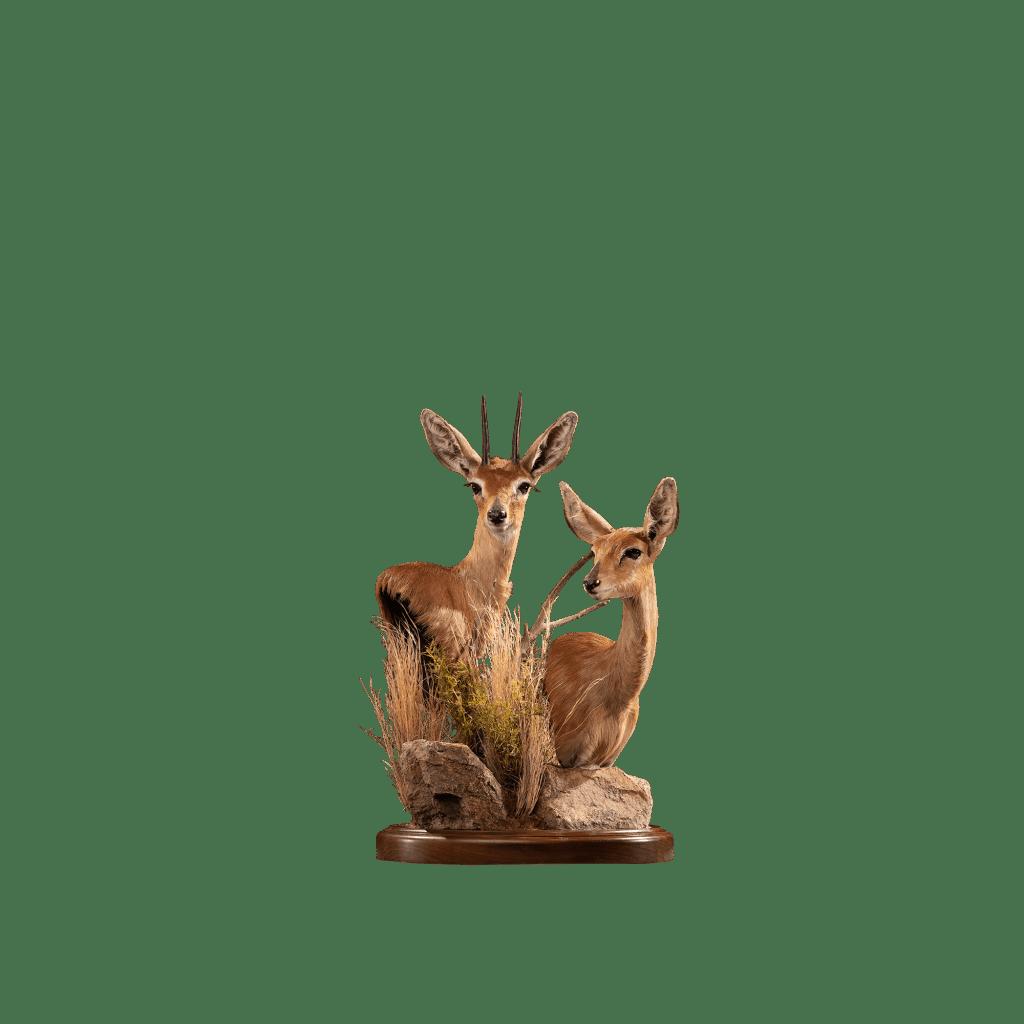 steinbok pedestal mount