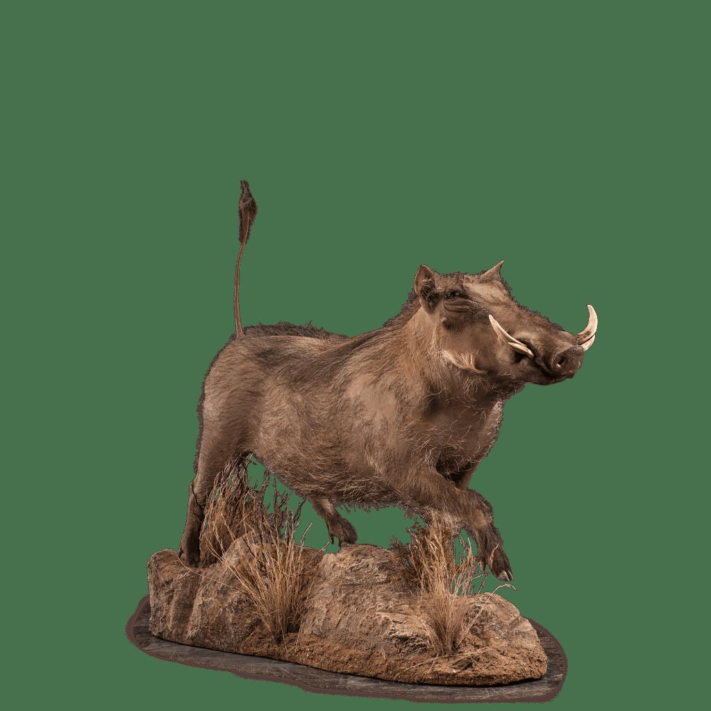 full size warthog mount