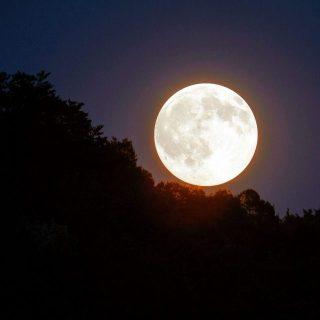 今日は、春分の日に満月で素晴らしい♪