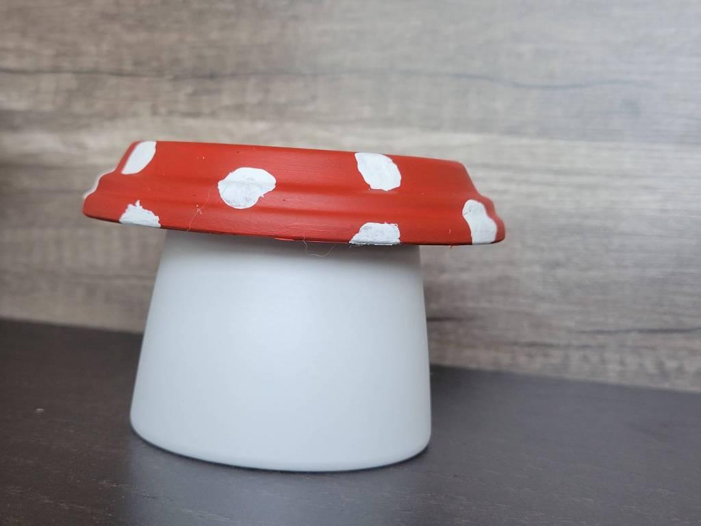 terra cotta pot mushrooms