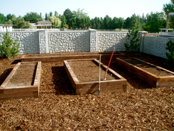 Raised timber vegetable beds