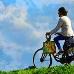 自転車保険の義務化にむけて・・加入にあたり注意するべきこと