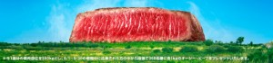 Uluru shaped from beef for the MLA campaign in Japan.