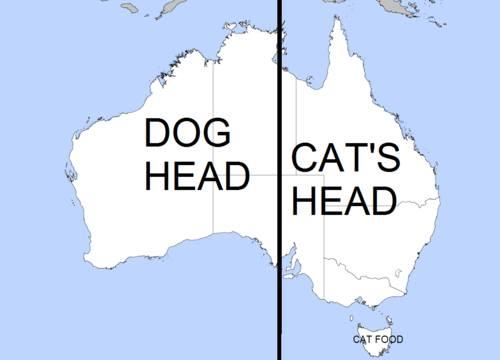 DogsandCatsHeads