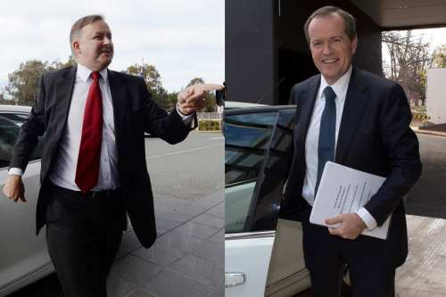 anthony-albanese-bill-shorten