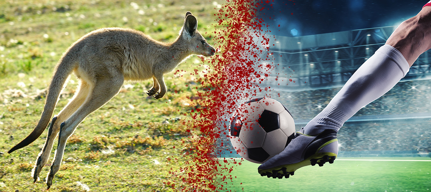 Short Film from Hollywood Moviemakers Exposes Nike's Role in Kangaroo Slaughter