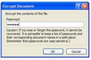 Cara menambah atau menghilangkan pasword pada MS Excel 2007