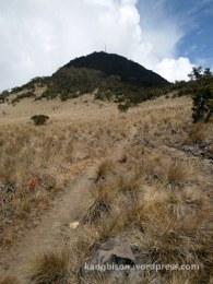 jalur sabana pos 6 pendakian gunung lawu dari cetho