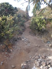 trek menuju pasar setan pendakian gunung lawu dari cetho