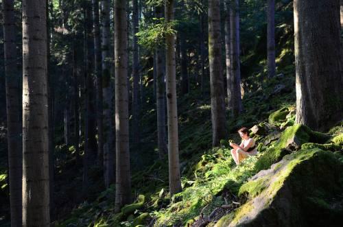 Frau meditiert in der Sonne im Wald
