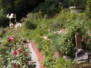 Garten im Wandelhaus