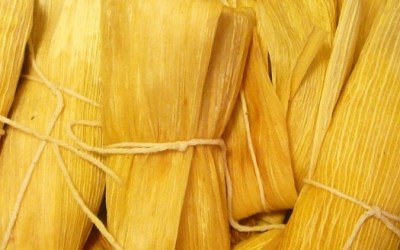 KANKUN® Tamales