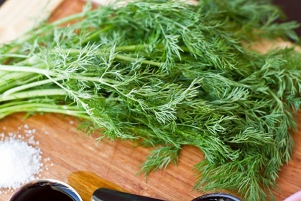 health-benefits-of-dill4